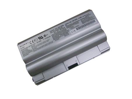 VGP-BPS8
